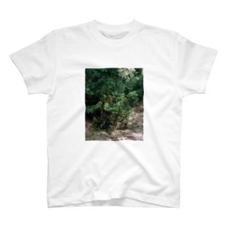 model-one T-shirts