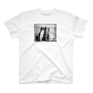 3CATS (モノトーンver.) T-shirts