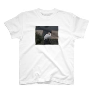 水鳥ちゃん T-shirts