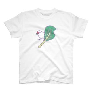 小松菜ちゃん Tシャツ