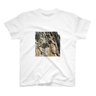 岩岩岩 T-shirts