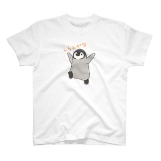しらんがな T-shirts