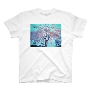 枝垂れ桜 T-shirts