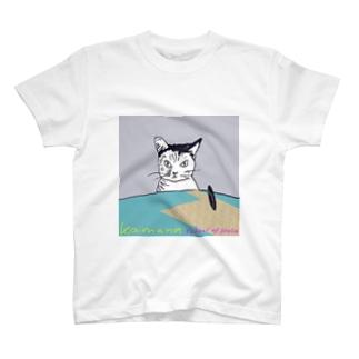 Kaimana  school  of  Hula T-shirts
