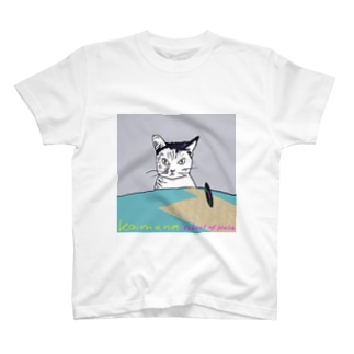 record mizukoshiのKaimana  school  of  Hula T-shirts