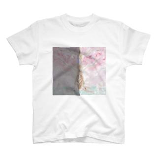 桜の木の下で猫何匹?色違いだよ T-shirts