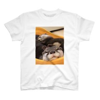 癒しかわうそ T-shirts