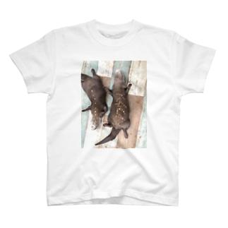 癒しかわうそ Tシャツ