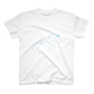 n T-shirts