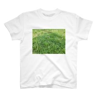河川敷の春 T-shirts