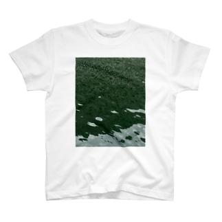 池 Tシャツ
