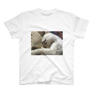 ミルクのアイテム T-shirts
