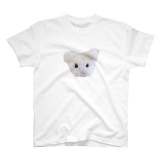 毛太郎(けたろう) T-shirts