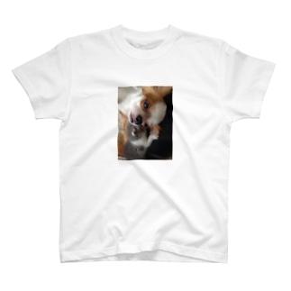 仲良し〜 T-shirts