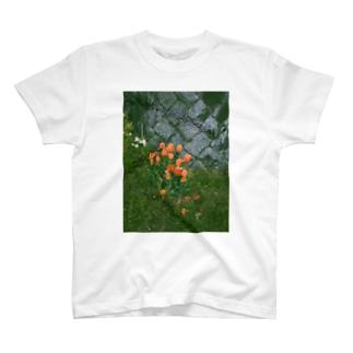 オレンジチューリップ T-shirts