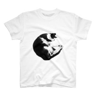 まるまりねこ T-shirts