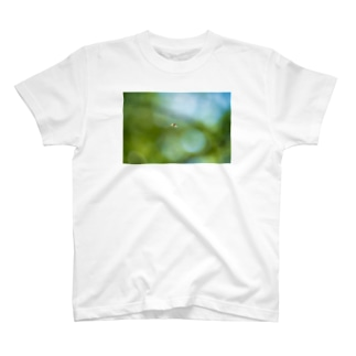 Ushun/ABU T-shirts