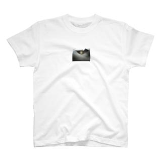 雪の灯篭 T-shirts