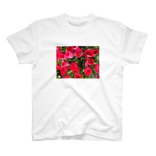🌷・・・🌷 T-shirts
