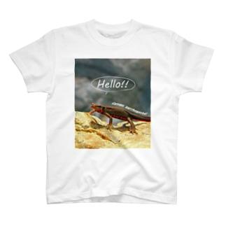 ハローアカハラ T-shirts