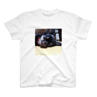 はんびらき T-shirts