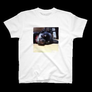 RAIZENのはんびらき T-shirts