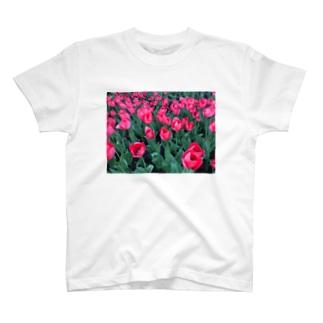 ウクライナのチューリップ T-shirts