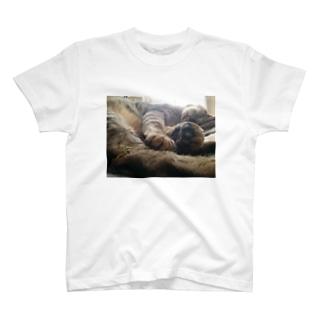 つくし T-shirts
