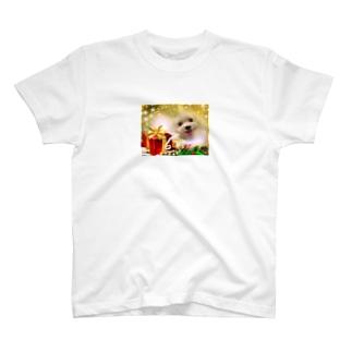 マルチーズ ギフト T-shirts