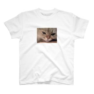 愛猫モモのどアップ画! T-shirts