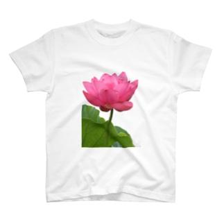 蓮~心の王冠 T-shirts