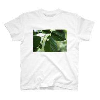 虫食いハート T-shirts