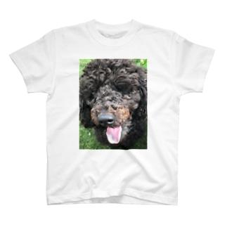 もふもふ犬トイプードル T-shirts