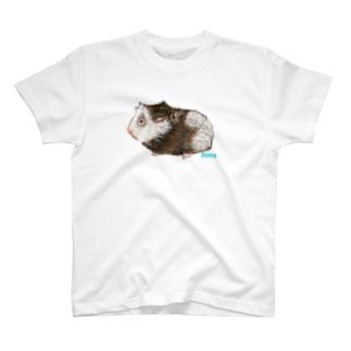 かわいいモルモット (アビシニアンミックス) T-shirts