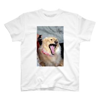 我が家のあくび2 T-shirts
