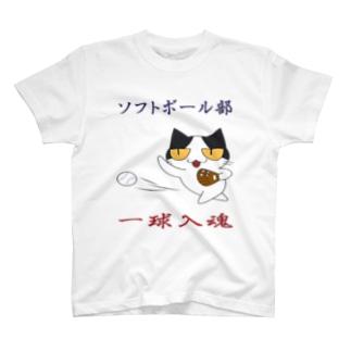 ソフトボール T-shirts