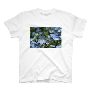 Nemophila T-shirts