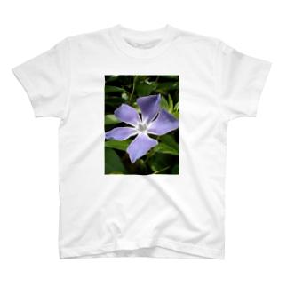 空と呼応して T-shirts