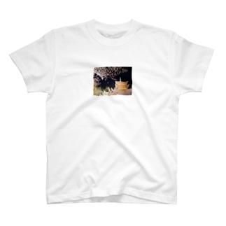 美の京都~世界の京都 T-shirts