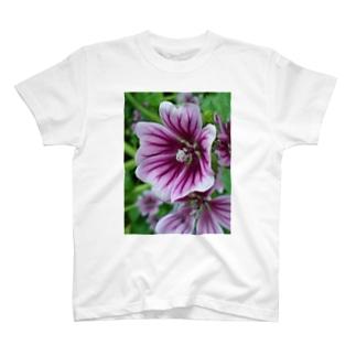 ハーブティー T-shirts