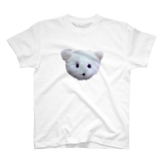 毛太郎 T-shirts