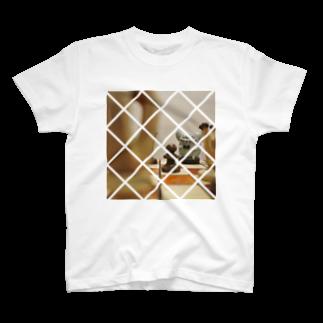 masilloのboard T-shirts