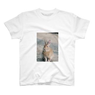 Kani(うさぎ)メイン T-shirts