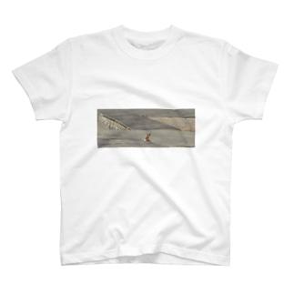ひょっこり、うさぎ T-shirts