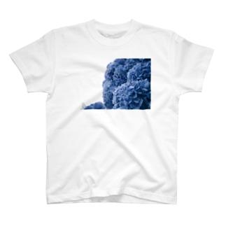 紫陽花と雨の T-shirts