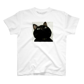 上から舞茸 T-shirts