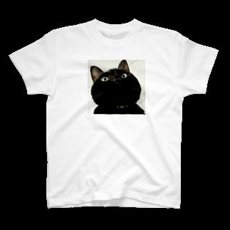 nkmap17の上から舞茸 T-shirts