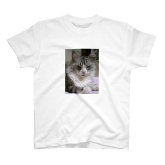 オネムです T-shirts