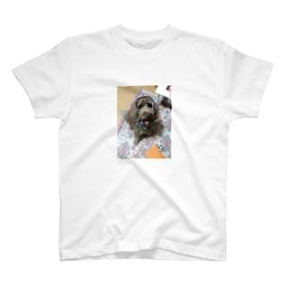 僕をみて T-shirts