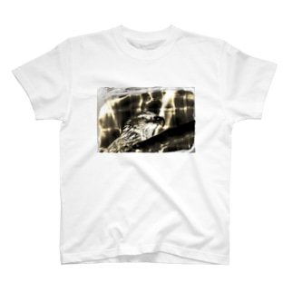 眼光 T-shirts